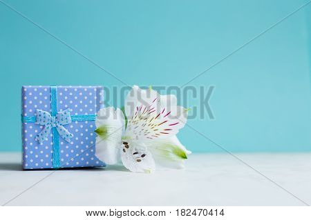 Blue Gift Box With Single Alstroemeria Flower On Mint Background