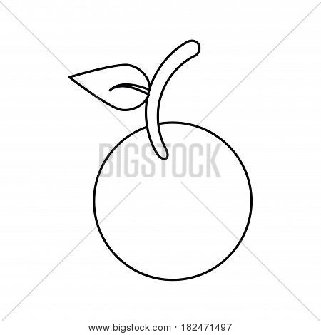 fruit vegan nutrition icon thin line vector illustration eps 10