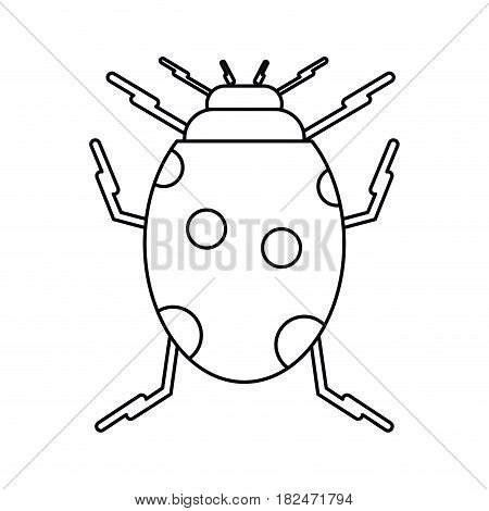 ladybug insect nature icon thin line vector illustration eps 10