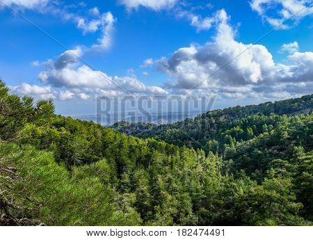 View from the top of Troodos Mountain in Cyprus in Spring
