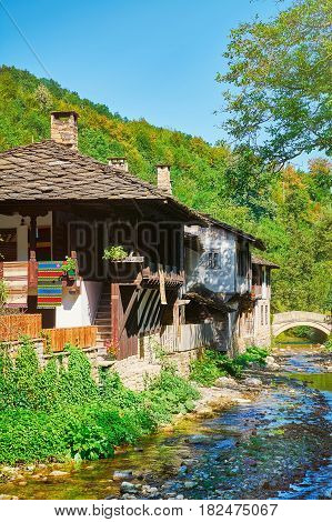 Houses on the Bank of a Small River