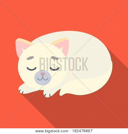 Sleeping cat icon in flate design isolated on white background. Sleep and rest symbol stock vector illustration.