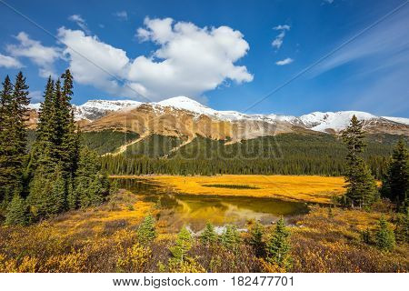 Sunny autumn day. Waterlogged valley in the Rocky Mountains. The concept of active tourism and ecotourism