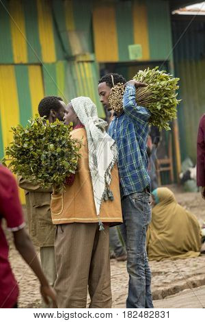 HARAR, ETHIOPIA-MARCH 26, 2017: Merchants buy and sell qat, a stimulant chewed by many people in Ethiopia and Somalia.