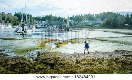 UCLUELET - BRITISH COLUMBIA, APRIL 10, 2017: Young boy walks along the tidal flats of the fishing village on the west coast of Vancouver Island.