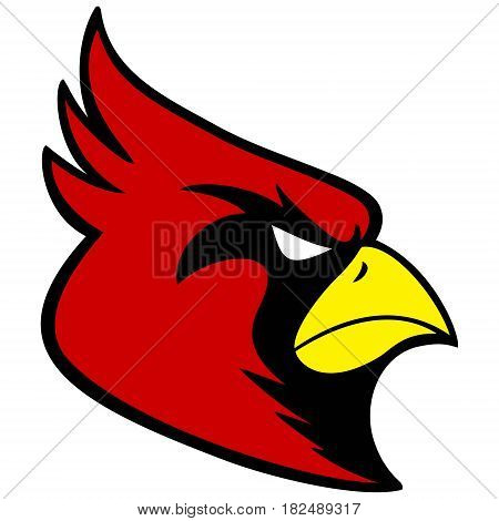 A vector illustration of a Cardinal mascot.