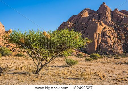 Huge granite rocks and stones in the Desert Namib. Play of light and shadow on the rocks. Concept of extreme and ecological tourism
