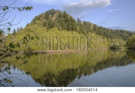 River reflections mountain and forest Oregon state.