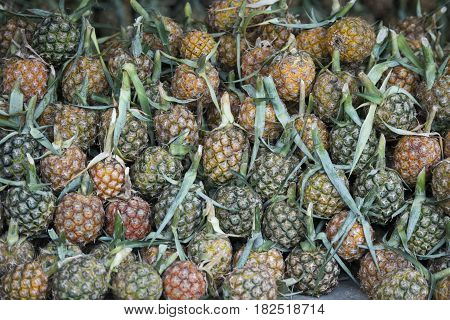 pineaple fruits at a market in the city of Chiang Rai in North Thailand.