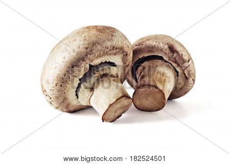 Fresh mushrooms champignons isolated on white background