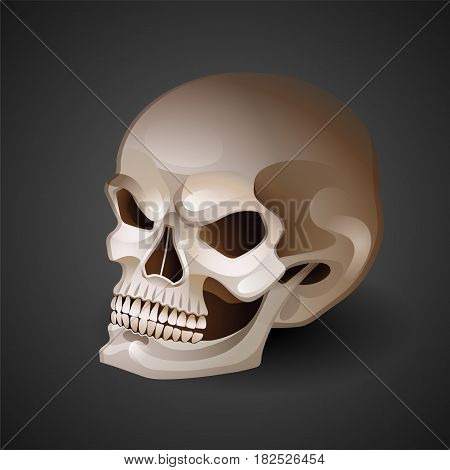 Graphic skull with fearful smile. Vector tattoo art isolated on dark background
