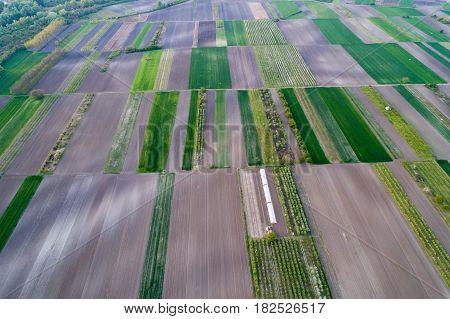 Aerial View Of Farmlands