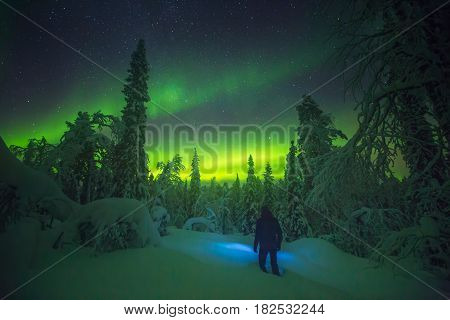 Discovering Northern lights over cold Lapland sky