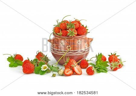 Ripe strawberry in a pot isolated on a white background.