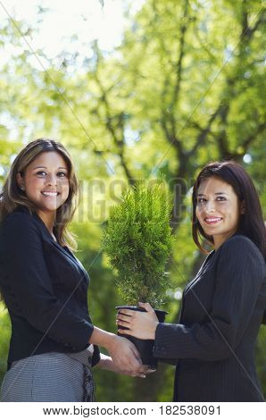 Hispanic businesswomen holding potted tree