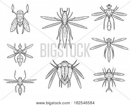 Set of eight cartoon vector hand drawn alien sci-fi insect designs in top down view