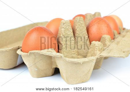 Box With Chicken Eggs