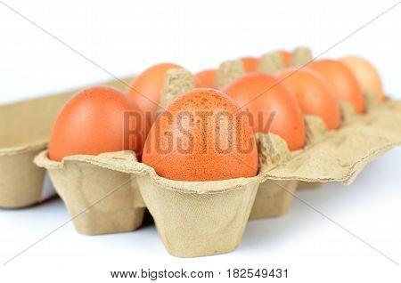 Box Of Chicken Eggs