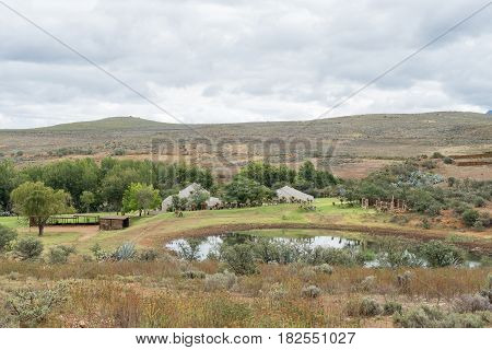 SWARTBERG SOUTH AFRICA - MARCH 24 2017: A farm landscape on the road between the Cango Caves and Calitzdorp