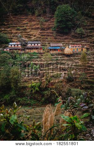 Nepal March 2017: A village perched on the side of a hill surrounded by terraced fields in the Annapurna region. Seen just off the Annapurna Circuit trek.