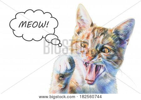 Red cat painted with colored pencils. Funny little tricolor kitten with raised paw says meow. Isolated illustration on white background
