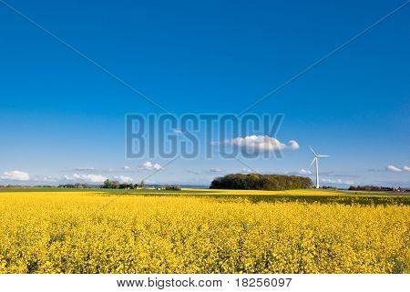 Vergewaltigung Feld und Wind-turbine