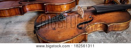 banner with two violina on a rustic wooden background or table