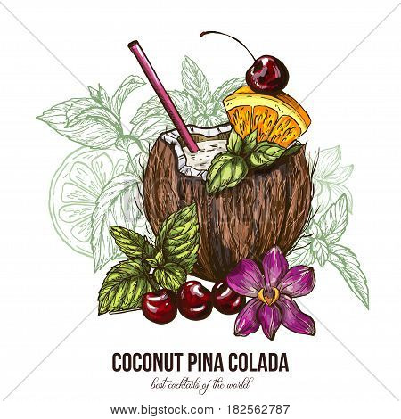 Coconut Pina Colada with orchid flower, vector illustration, colored sketch hand drawn