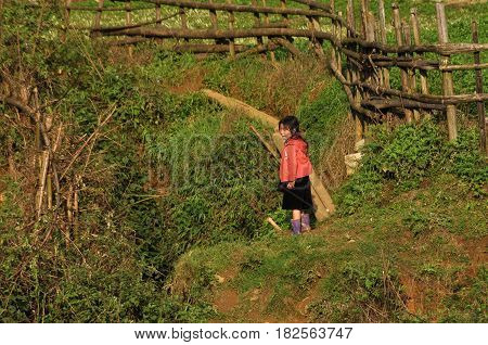 Ethnic Hmong Minority Kids Playing In The Outdoor