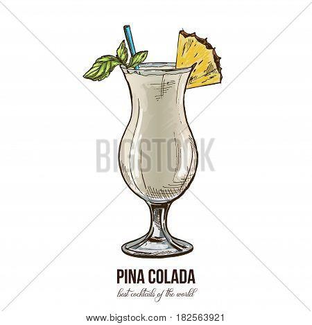 Pina colada cocktail, vector illustration, colored hand drawn sketch