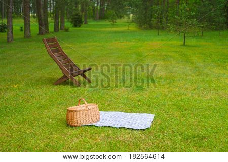 Picnic basket with blue white checkered napkin on grass. Summertime park in the background