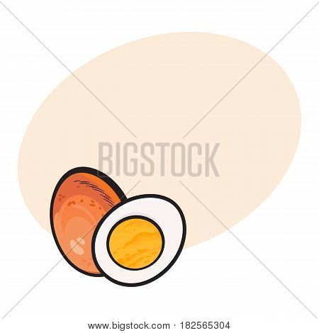 Boiled, peeled chicken egg, whole and cut in half, sketch style vector illustrationwith space for text Hand drawn, sketched illustration, whole and half of hard boiled chicken egg