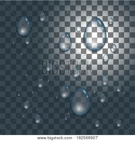 Vector water drops on the opacity background. Stock vector.
