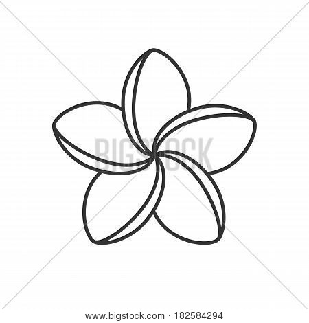 Spa salon plumeria flower linear icon. Thin line illustration. Aromatherapy contour symbol. Vector isolated outline drawing