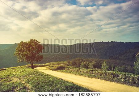 Landscape in nature of sky with cloudy and roadway through a evergreen forest. Road passing mountain. Beautiful of nature summer mountain landscape. Cross process and vintage tone.
