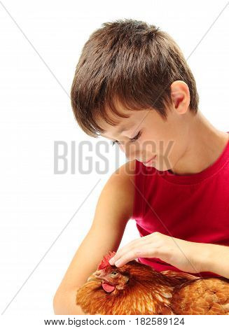 Young boy looking at his chicken on white background