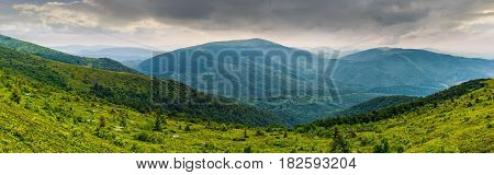 panoramic summer landscape with hillside meadow in mountains