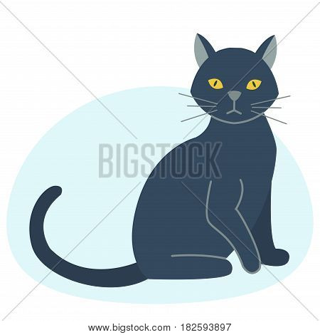 Cute black cat character funny animal domestic kitten vector illustration. Pet feline portrait fluffy young adorable mammal whisker pussy cartoon small kitty.