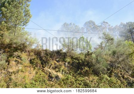 Smokes of a fire in the mountains of Soutomaior a municipality in the province of Pontevedra in Galicia Spain.