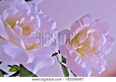 искусственные бутоны роз выглядят как живые цветы
