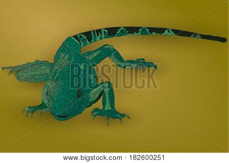 Realistic green lizard. The tail is cute. Vector illustration.