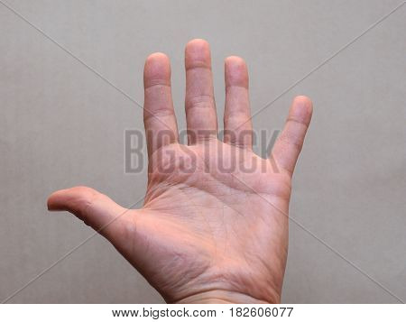 palmar view of young adult male hand