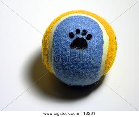 Tennis Ball Paw