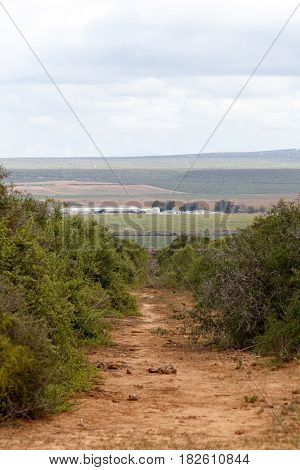 Gravel Road Leading To Fields Of Lands