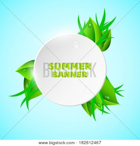 White light round banner in the summer style. Fresh leaves and grass. Drops of dew flow down the leaves. Ecological banner. Realistic vector illustration. The sky is in the background. EPS 10