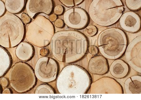 saws of trees of different sizes, natural wood, a wallpaper.