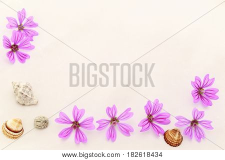 Postcard With Empty Place For Inscription From Scattered Pink Small Flowers,  Sea Stone And Seashell