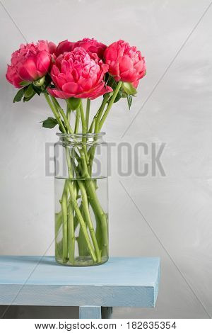 Bouquet of fresh coral peony flowers in glass vase on wood table and gray background