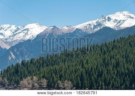 Xinjiang, China - May 09 2015: Snow Mountain In Heaven Lake Of Tian Shan(tianchi). A Famous World He