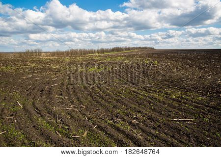 ploughed field in nice sunny spring